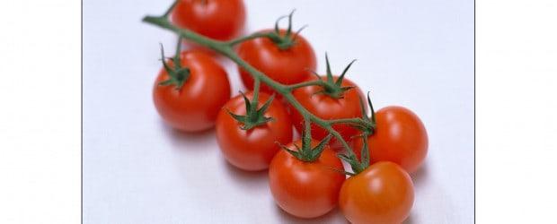 tomatoesTruss