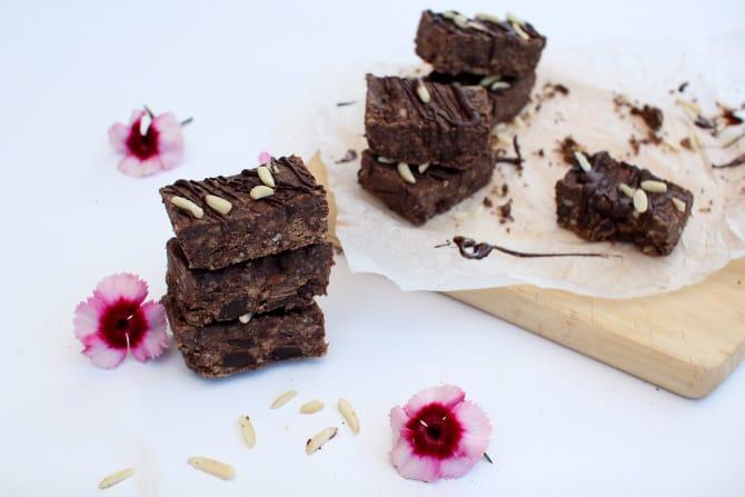 Chocolate Fudge Protein Bars