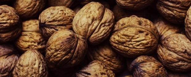 nuts-walnuts-large